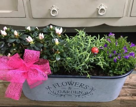 Flower and Garden Planter